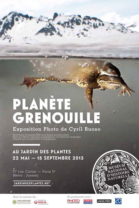 Exposition « Planète Grenouille » à Paris (75),  du mercredi 22 mai  au samedi 15 septembre 2013