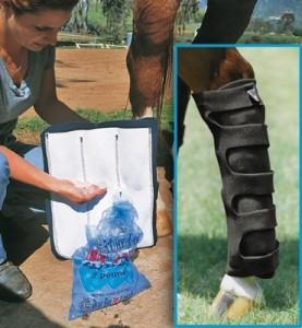 Equitation : rôle et importance des protections des membres pour le cheval