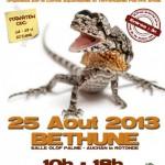 14 ème Bourse aux Reptiles à Béthune (62), dimanche 25 août 2013