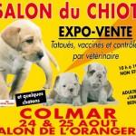 Le Salon du Chiot va ouvrir ses portes à Colmar, du samedi 24 au dimanche 25 août 2013