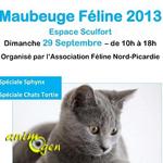 Exposition Féline à Maubeuge (59), le dimanche 29 septembre 2013
