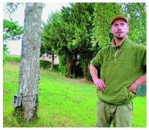 Un loup identifié dans l'affaire de l'abattage des chiens errants de l'Aube et de la Haute Marne