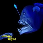 La bioluminescence au service des créatures marines et terrestres