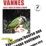 Exposition et Bourse aux oiseaux exotiques à Vannes (56), le dimanche 29 septembre 2013