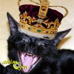 Les chats et la royauté française, une histoire à faire peur !