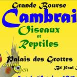Grande Bourse Oiseaux et Reptiles à Cambrai (59), du samedi 05 au dimanche 06 octobre 2013