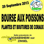Bourse aux Poissons, plantes et boutures de coraux à Dossenheim-sur-Zinsel (67), le dimanche 29 septembre 2013