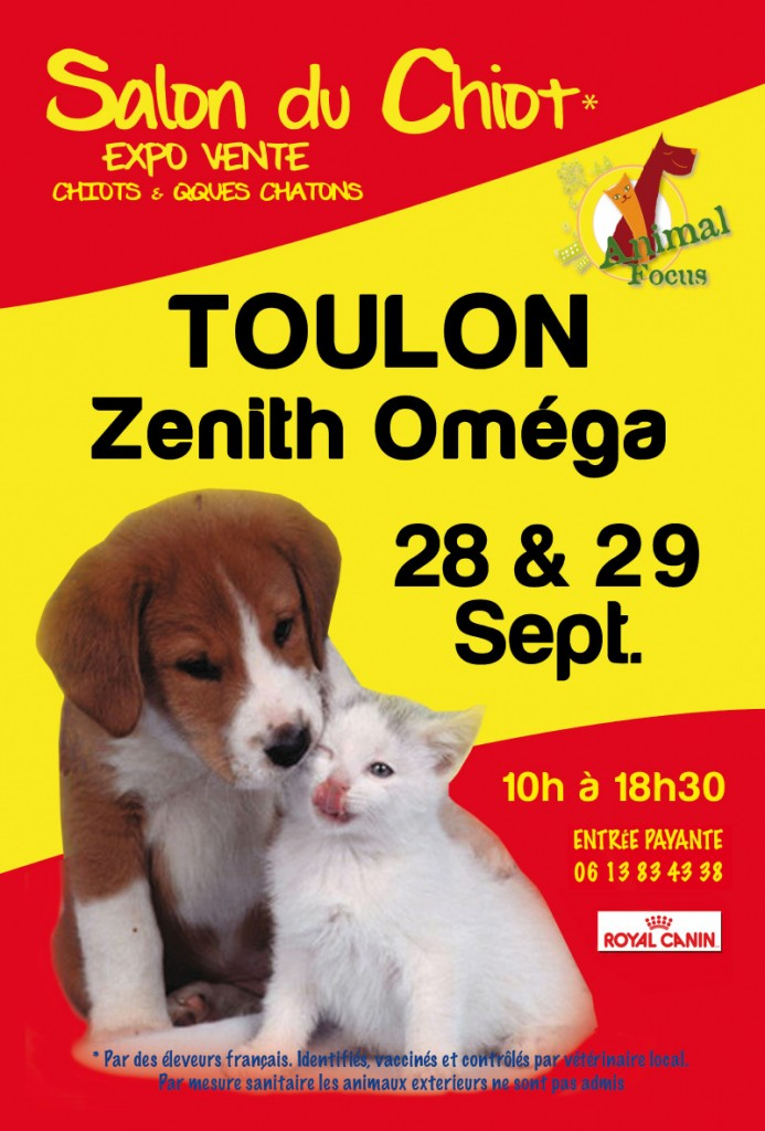 27 me salon du chiot animal focus toulon 83 du for Salon du chien et chat