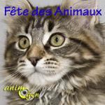 Fête des Animaux à Ribécourt-la-Tour (50), le dimanche 29 septembre 2013
