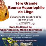 1 ère Grande Bourse Aquariophile à Liège (Belgique), le dimanche 20 octobre 2013