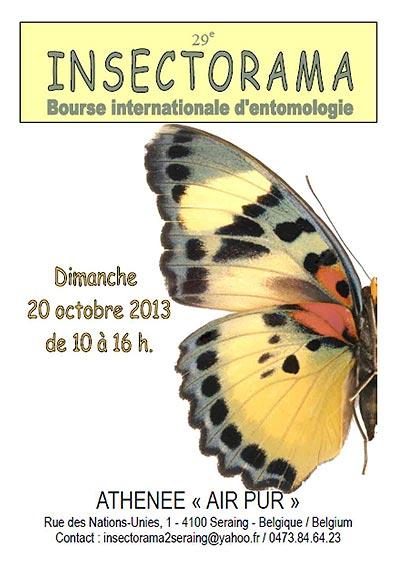29 ème Bourse Internationale d'Entomologie « Insectorama » à Seraing (Belgique), le dimanche 20 octobre 2013