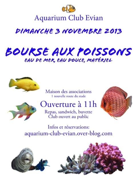 Bourse aux poissons evian les bains 74 le dimanche 03 for Vente aquariophilie