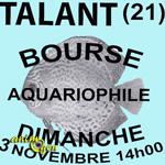 Bourse aquariophile à Talant (21), le dimanche 03 novembre 2013