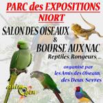 40 ème Salon des oiseaux et bourse aux NAC, reptiles, rongeurs à Niort (79), du samedi 09 au dimanche 10 novembre 2013