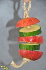 Alimentation : la farandole de pommes et courgettes, une note de fantaisie dans les repas de nos perroquets