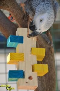 Jouet à fabriquer : tour de Babylone à fourrager pour perroquets
