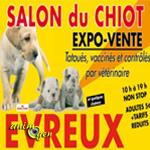 Salon du chiot à Evreux (27), du samedi 02 au dimanche 03 novembre 2013
