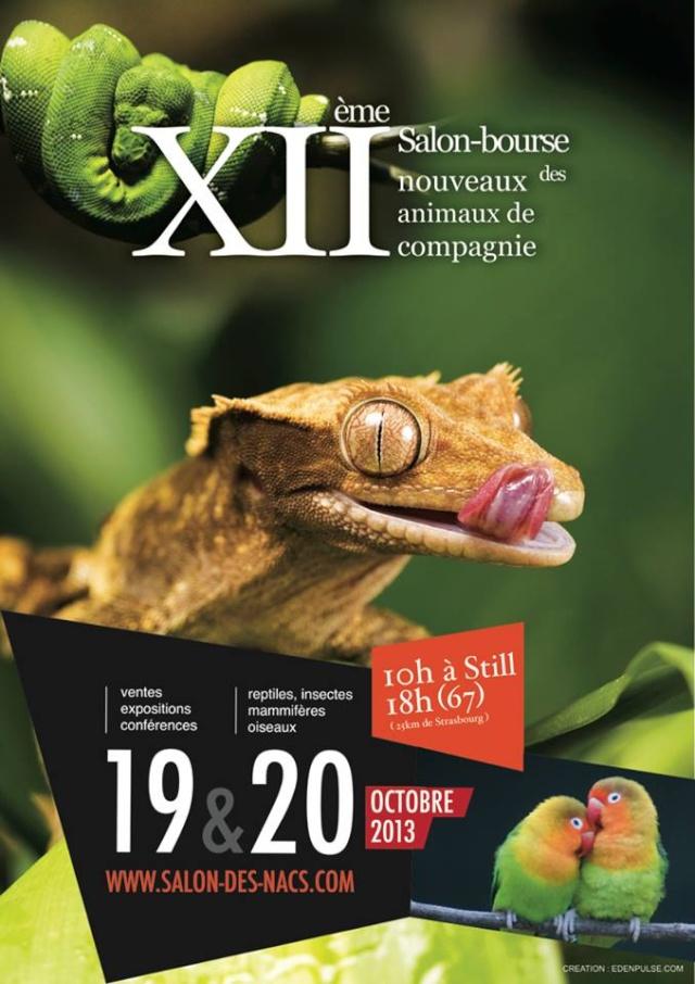 XII ème Salon-bourse des nouveaux animaux de compagnie (NAC) à Still (67), du samedi 19 au dimanche 20 octobre 2013