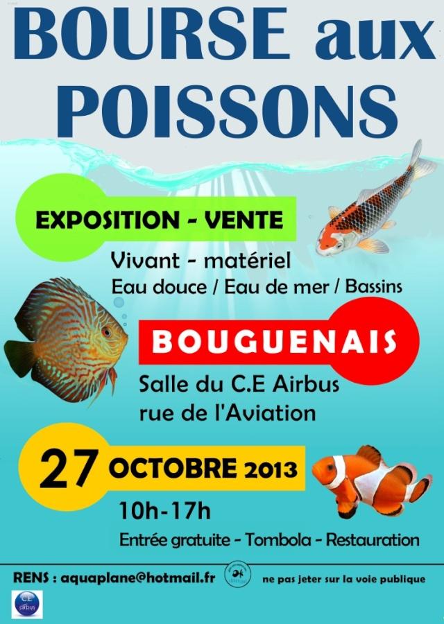 Bourse aux poissons à Bouguenais (44), le dimanche 27 octobre 2013