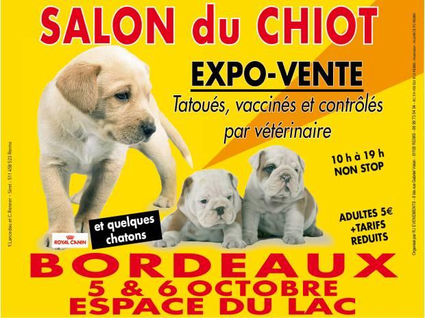 Salon du chiot à Bordeaux (33), du samedi 05 au dimanche 06 octobre 2013