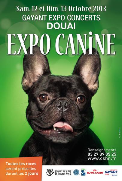 Expo canine douai 59 du samedi 12 au dimanche 13 - Salon du chiot douai ...
