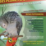 Les journées du perroquet (4 ème édition), Tours (37), du samedi 16 au dimanche 17 novembre 2013