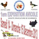 Exposition avicole à Schirmeck (67), du samedi 14 au dimanche 15 décembre 2013