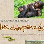 """Conférence """"Connaître et protéger... les chimpanzés"""" à Montalieu-Vercieu (38), le vendredi 15 novembre 2013"""