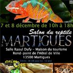 bourse-expositions-salon-reptile-Martigues-décembre-2013-07-08-éleveur-serpent-tortue-gecko-amphibien-lézard-matériel-animal-animaux-compagnie-animogen-0