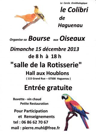 Bourse aquariophile à Haguenau (67), le dimanche 15 décembre 2013