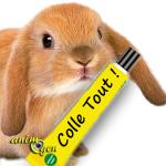 Quel type de colle peut-on utiliser sans danger pour les jeux et accessoires de nos rongeurs et lapins ?