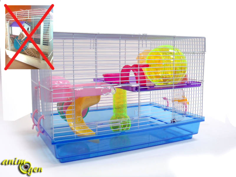 vous allez adopter un hamster cage gamelles jouets liti re les accessoires indispensables. Black Bedroom Furniture Sets. Home Design Ideas