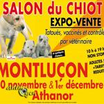 30 novembre 2013 animogen - Salon du chiot belfort ...