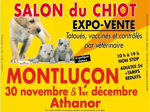 Salon du chiot à Montluçon (03), du samedi 30 novembre au dimanche 01 er décembre 2013