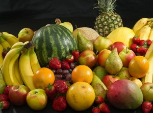 La nutrition des psittacidés en captivité (deuxième partie) : entre excès et carence, la ration idéale ?