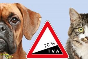 Hausse de la TVA en 2014 dans les élevages canins et félins : de 7 à 20 %, jusqu'où ira-t-on ?