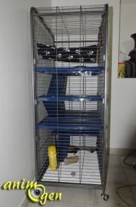 Cage pour furets, rongeurs et lapins : Tower XL (dimensions,description, prix, test)