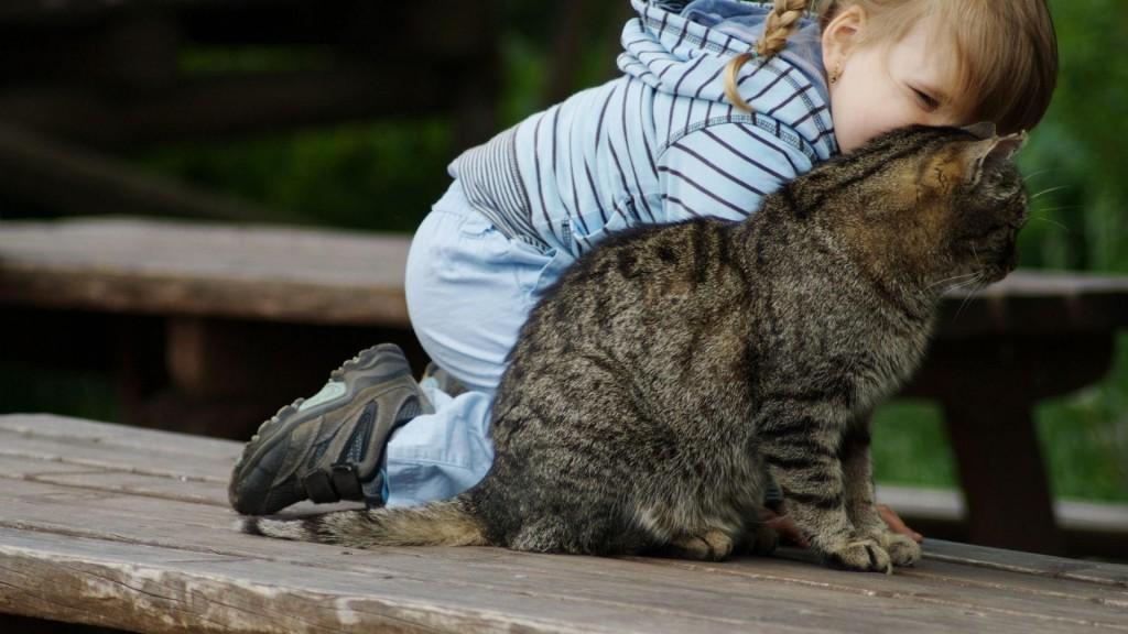 L'influence de la présence d'animaux sur le travail et l'intelligence des enfants