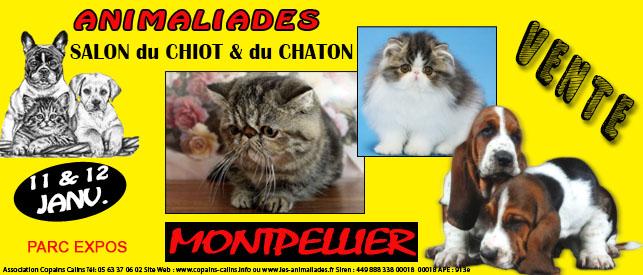 Salon animalier animaliades montpellier 34 du samedi 11 au dimanche 12 janvier 2014 - Salon du tatouage montpellier ...