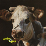 """Exposition d'Art animalier """"Capton"""" à Belfort (90), du 07 décembre 2013 au 04 janvier 2014"""