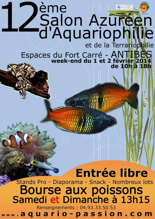 15 ème Bourse aux poissons et coraux à Antibes (06), du samedi 01 er au dimanche 02 février 2014