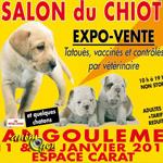 Salon du chiot à Angoulême (16), du samedi 11 au dimanche 12 janvier 2014