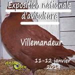 Exposition Nationale d'Aviculture à Villemandeur (45), du samedi 11 au dimanche 12 janvier 2014