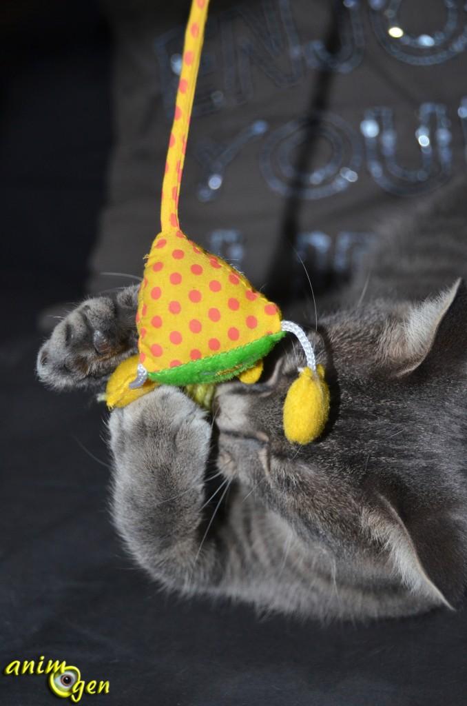 Jouet pour chat : souris pyramidale (Aimé)