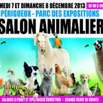 salons-animalier-périgueux-décembre-2013-07-08-lapins-oiseaux-basse-cour-chien-chat-éleveurs-nac-rongeurs-animal-animaux-animaliers-compagnie-animogen-0