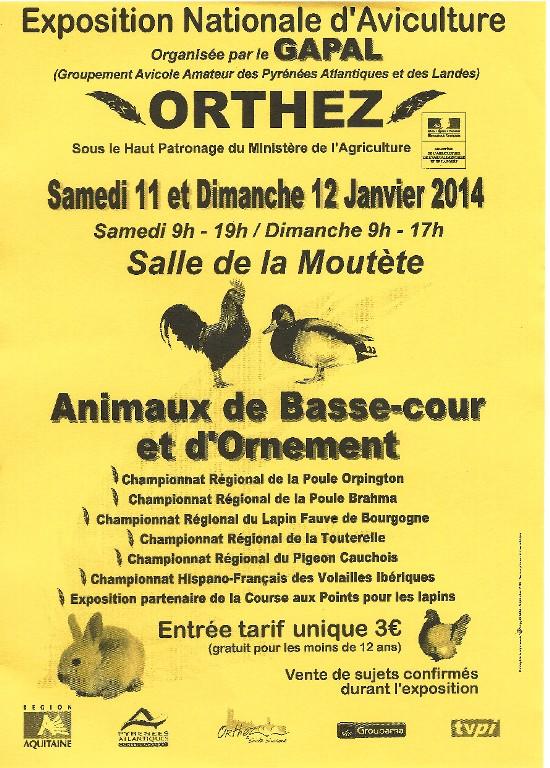 Exposition Nationale d'Aviculture à Orthez (64), le dimanche 12 janvier 2014