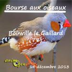 Bourse aux oiseaux à Boinville le Gaillard (78), le samedi 14 décembre 2013