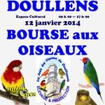Bourse aux oiseaux à Doullens (80), le dimanche 12 janvier 2014