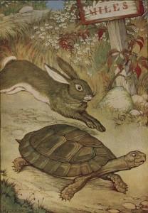 Lapin contre tortue en Chine, ou pourquoi Jean de La Fontaine avait raison