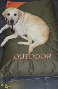 "Accessoire canin : coussin ""Outdoor"" pour grand chien (Zooplus)"